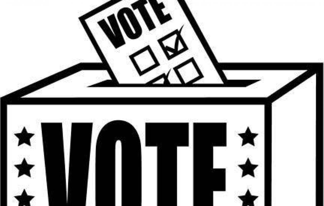 Trustee Nomination/Election